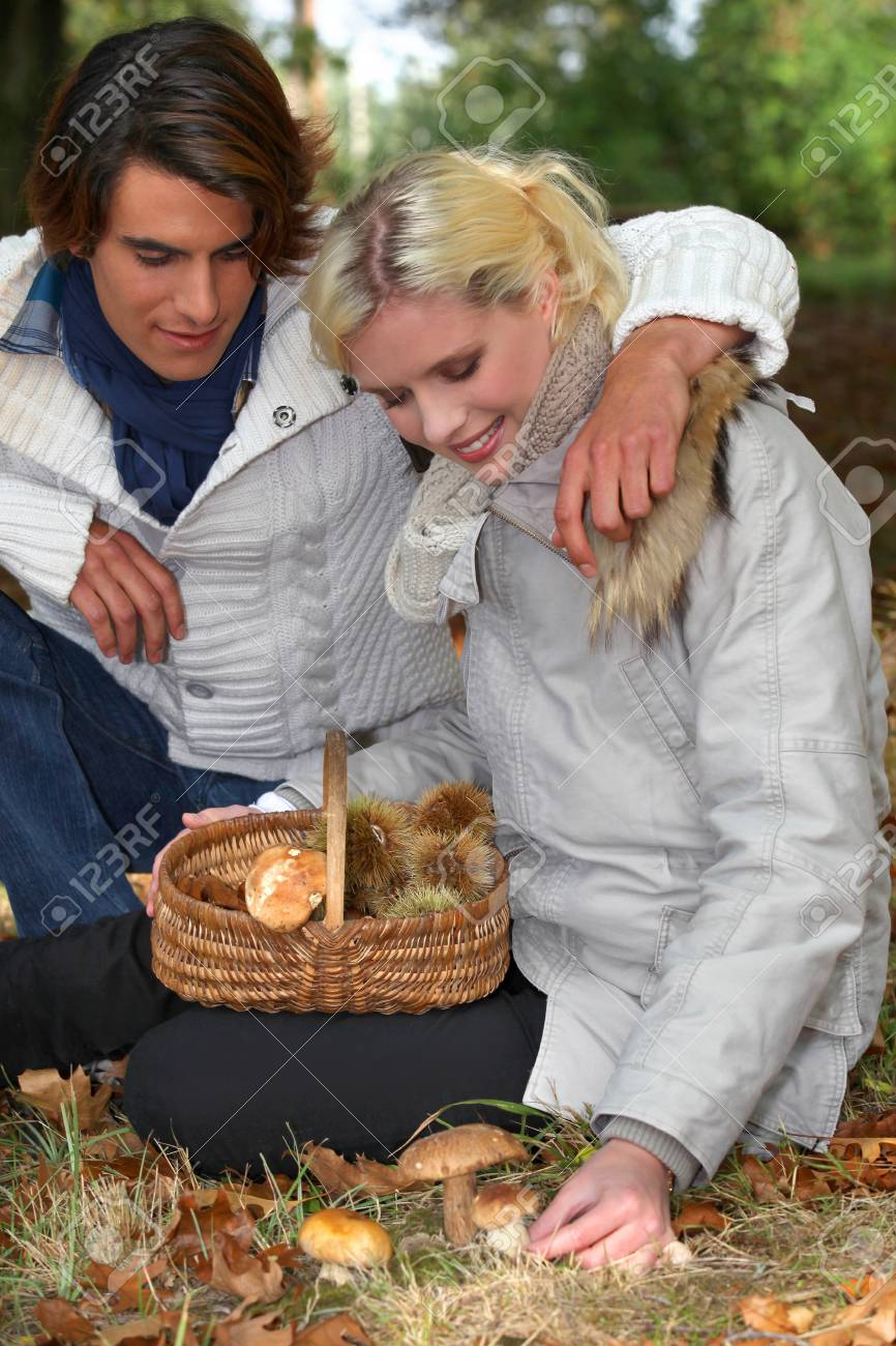 Couple picking wild mushrooms Stock Photo - 12727892