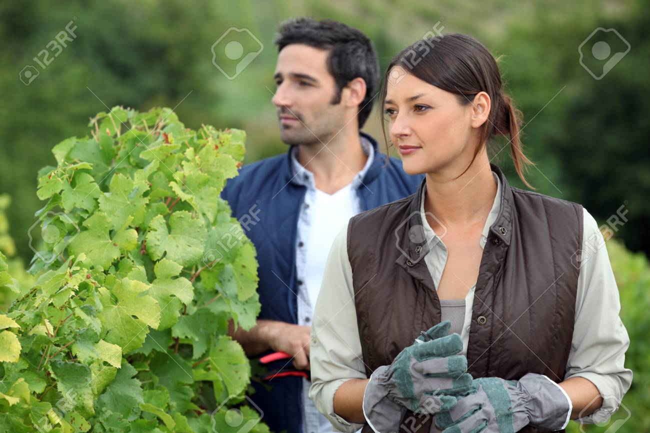 Farmer and wife in field Stock Photo - 13767604