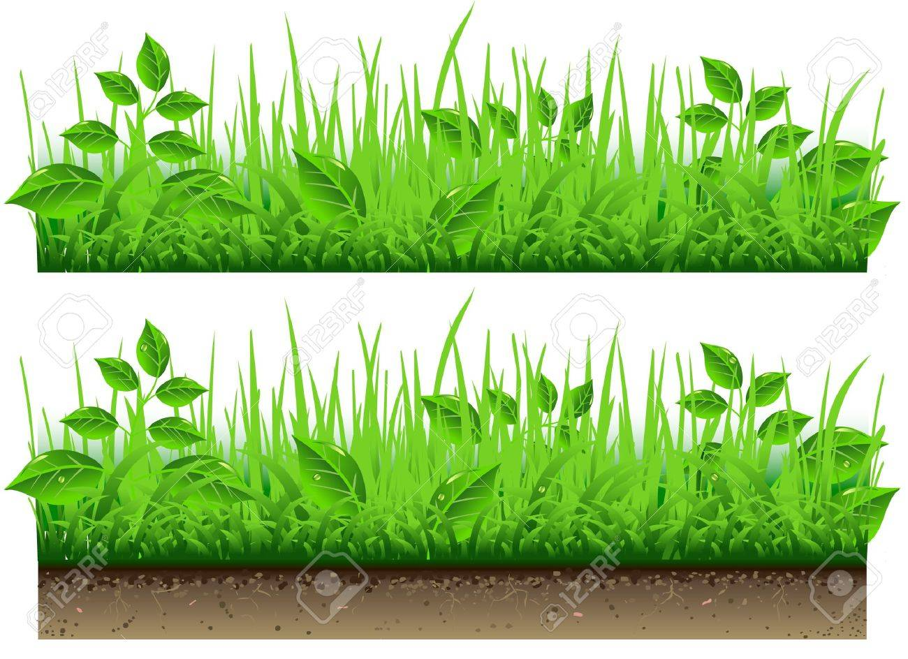 Detailed illustration of a Grass Border Stock Vector - 18239651