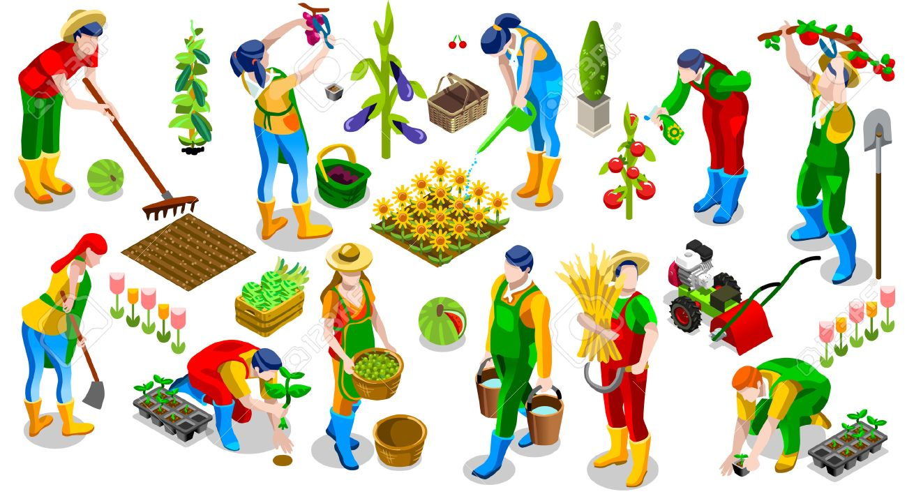 Isometric farmer people 3D icon set collection vector illustration. Farm field scene seed plant gardening tool - 70905514