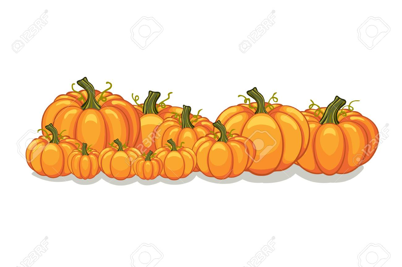 Halloween Vector Orange Pumpkins Graphic. Horizontal Banner Design ...