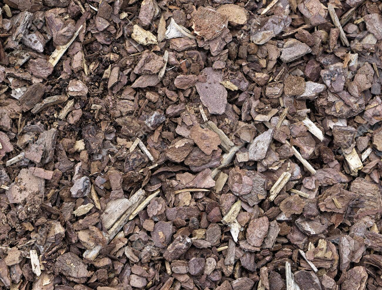 Shredded Pine Bark Mulch For Covering The Soil In Garden To Avoid Stock Photo Picture And Royalty Free Image Image 131307039
