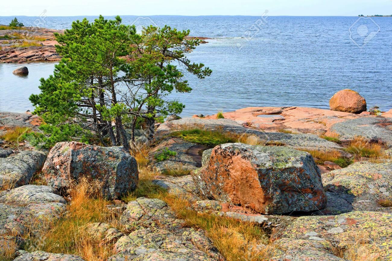 Rocky red granite seashore in Käringsund, Aland Islands (Finland). - 132707173