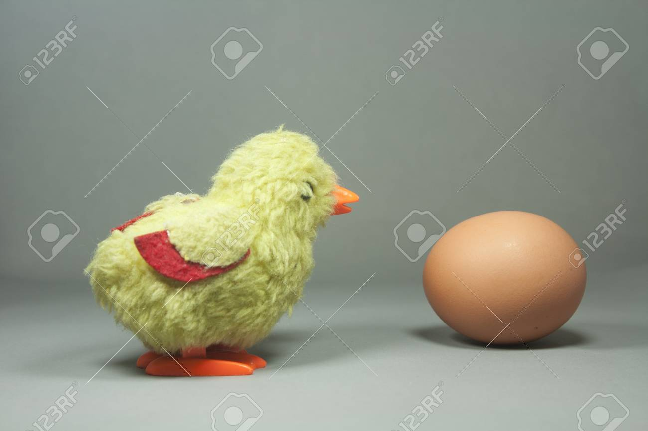 easter chick and egg isolated Stock Photo - 10561710