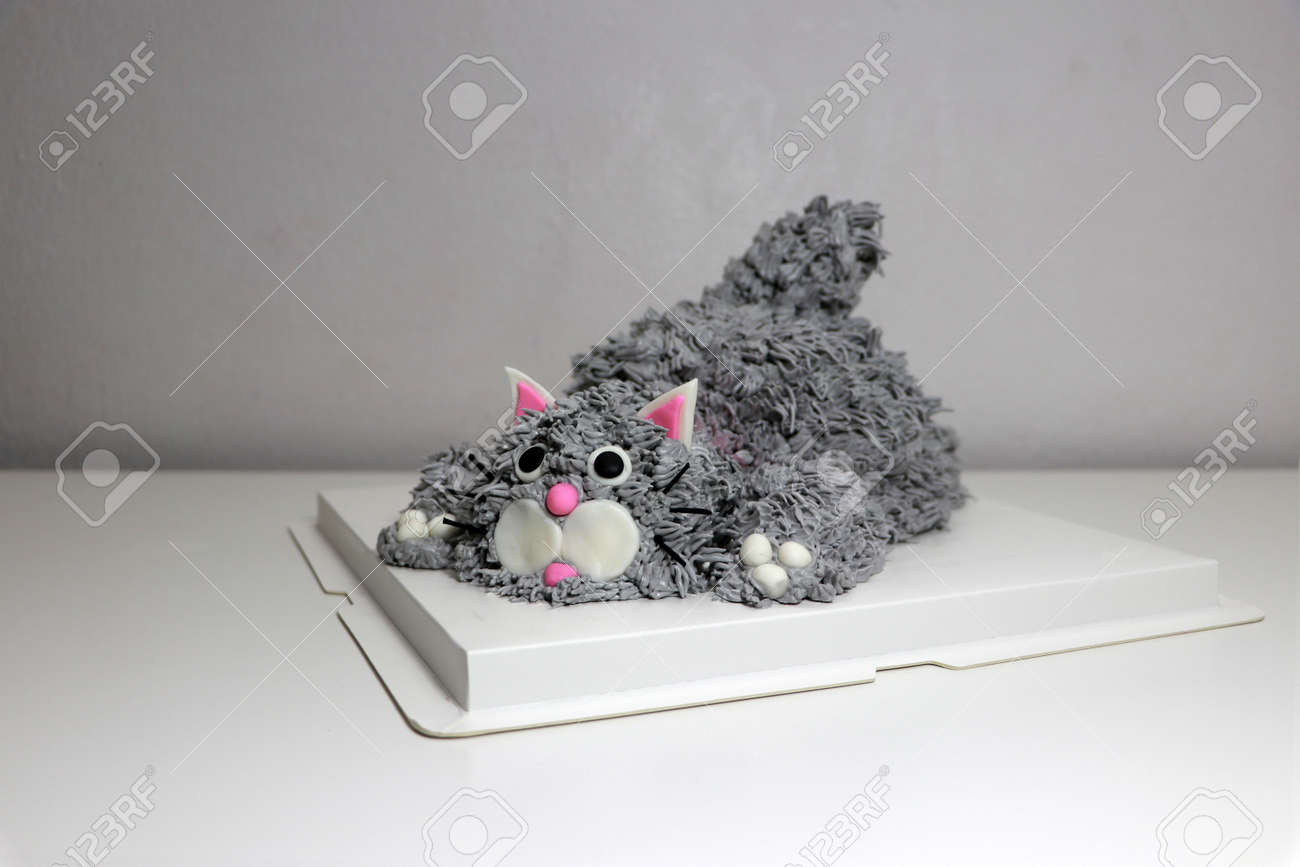 Cake made in the shape of a grey cat. It is doing a crouching pose on a white square paper tray. - 163004355
