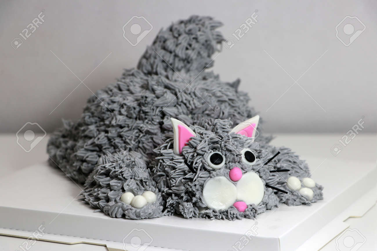 Cake made in the shape of a grey cat. It is doing a crouching pose on a white square paper tray. - 163004351