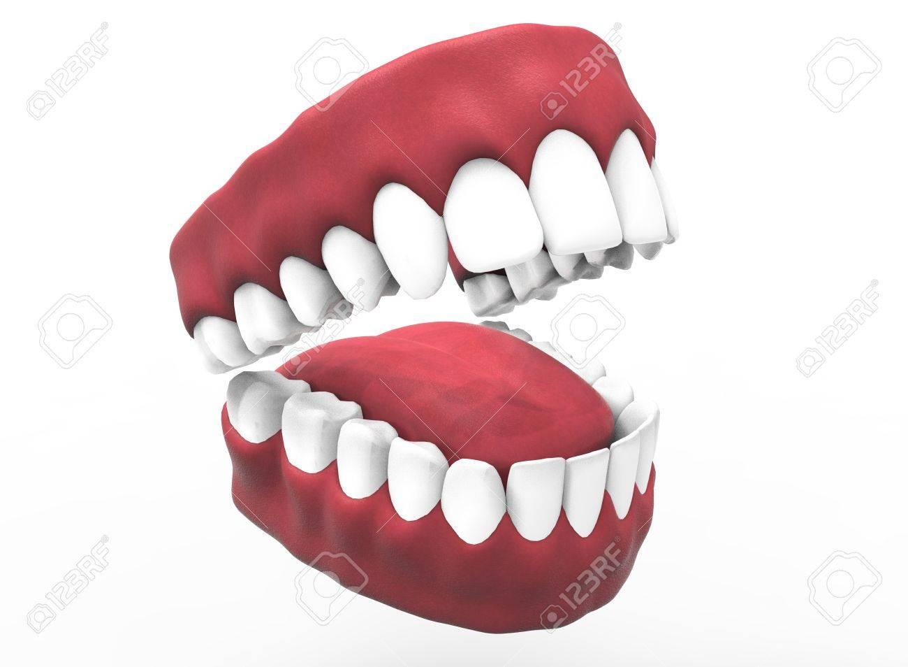 3D-Darstellung Der Geöffneten Gummi Mit Zähnen Und Zunge ...