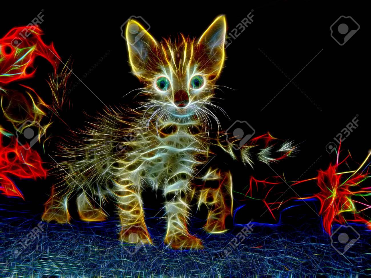 Imagen De Un Gato En Luz De Neón