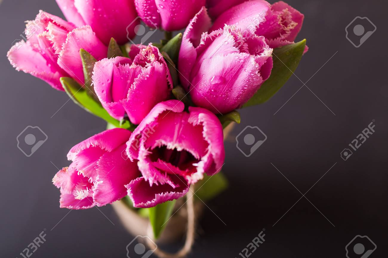 Pink Tulips On Black Background Pink Tulip Tulips Flowers