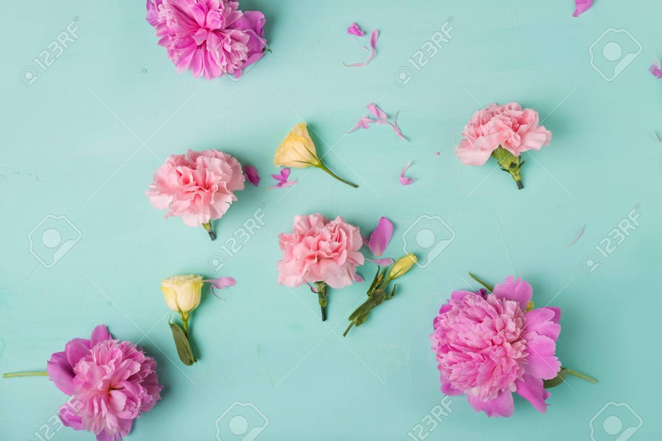 Rosa Nelken Blumen Pfingstrosen Rosa Pfingstrosen Auf Einem