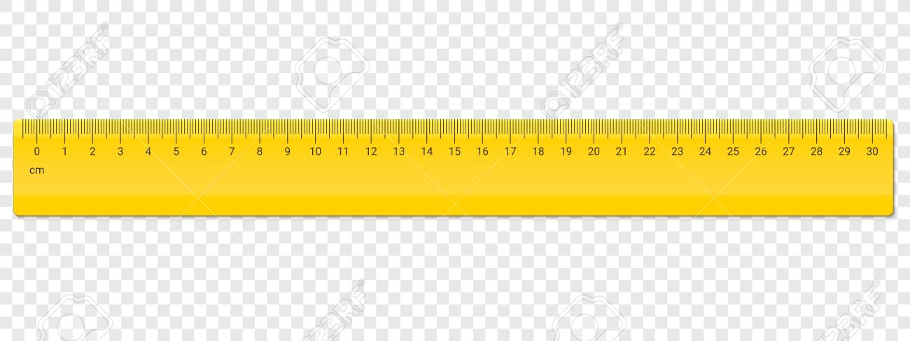 ruler centimeter cm scale vector school plastic yellow ruler