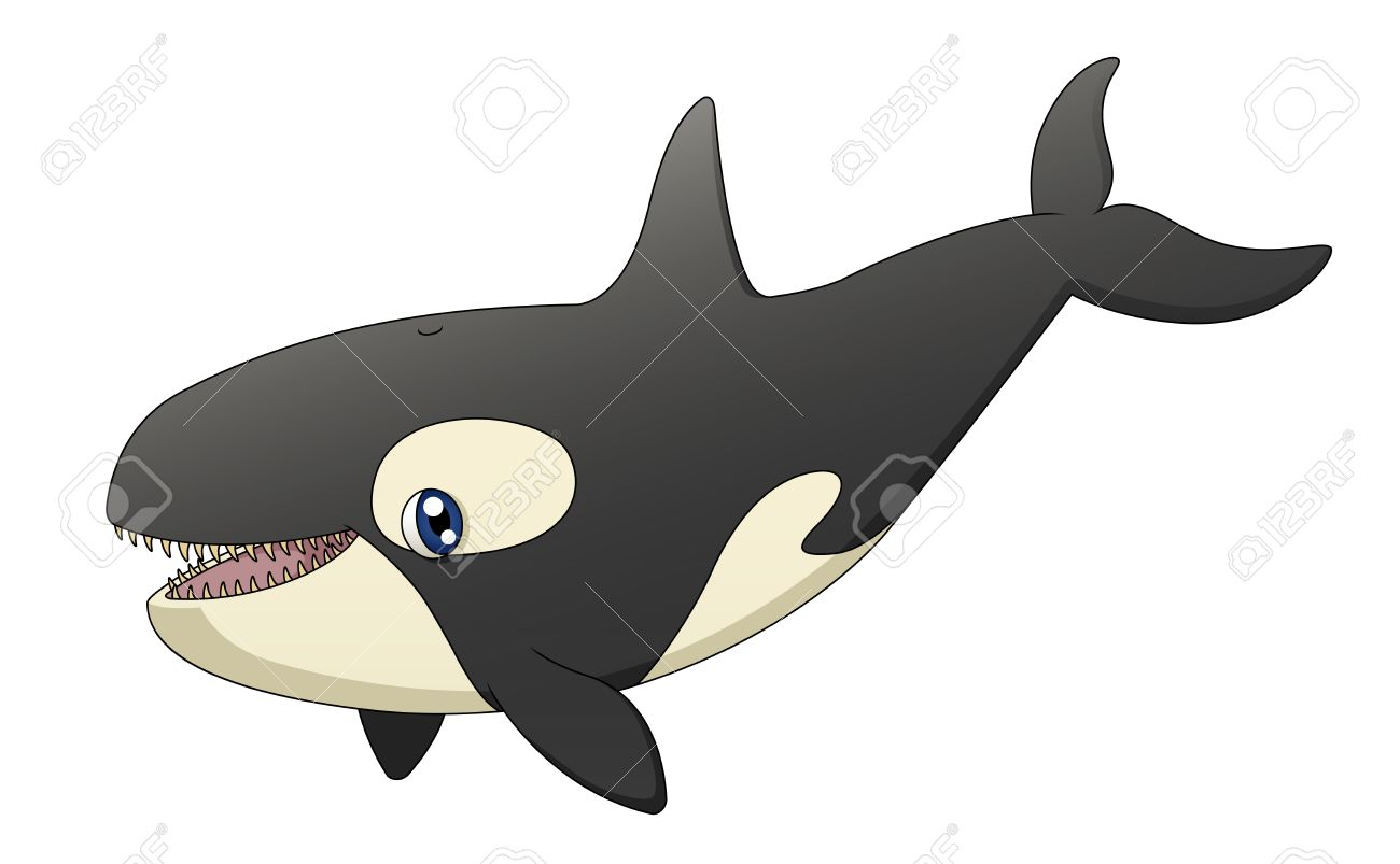 An illustration depicting a cute cartoon killer whale singing Stock Vector - 17629223