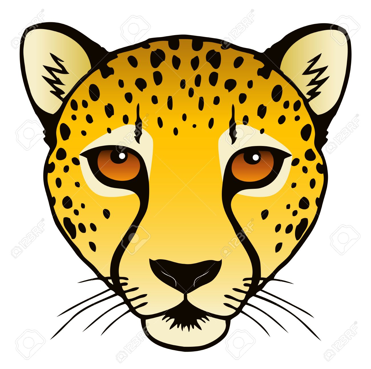 A vector ink illustration of a cheetah s head Stock Vector - 18203767