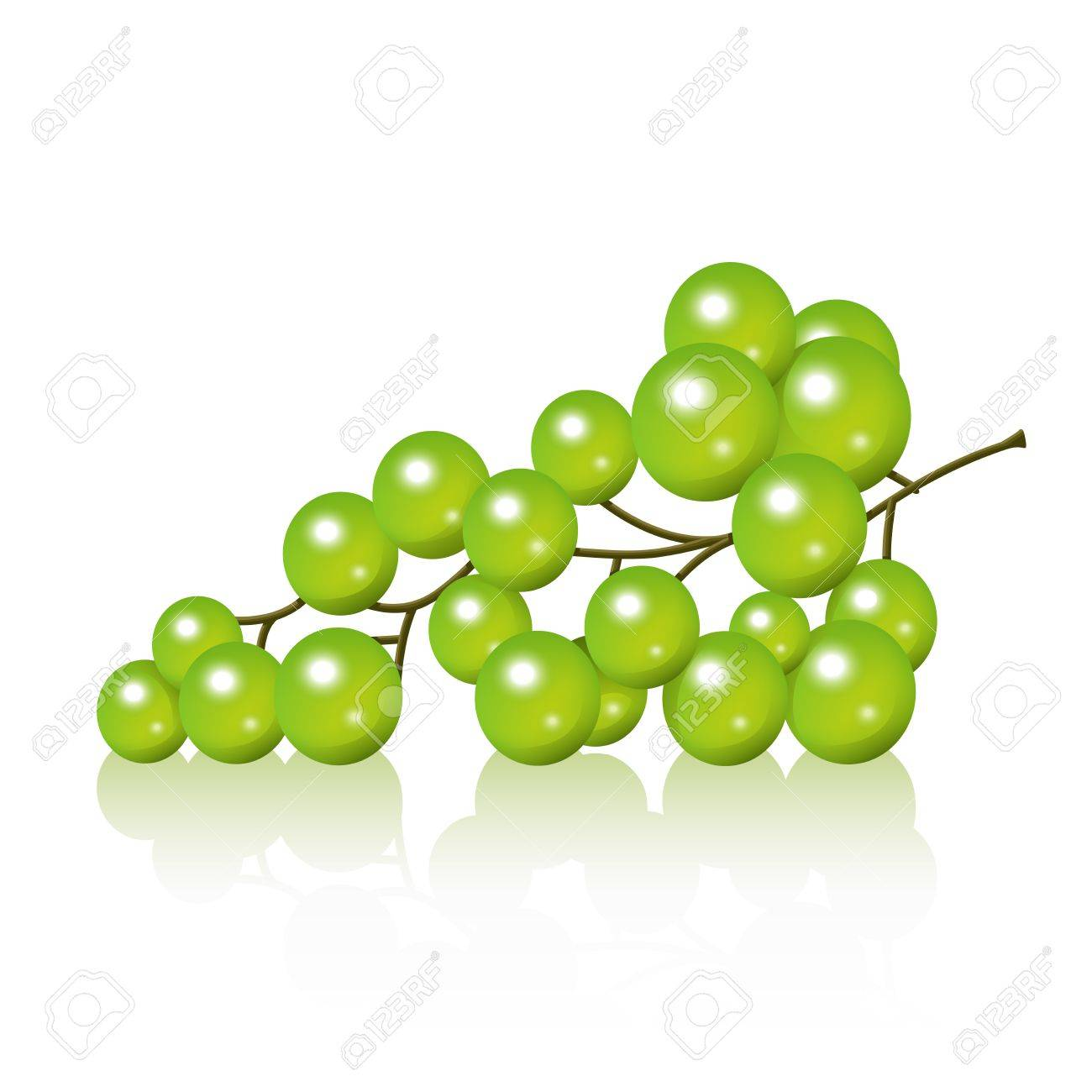 Realistic grape bunch illustration Stock Vector - 18264061