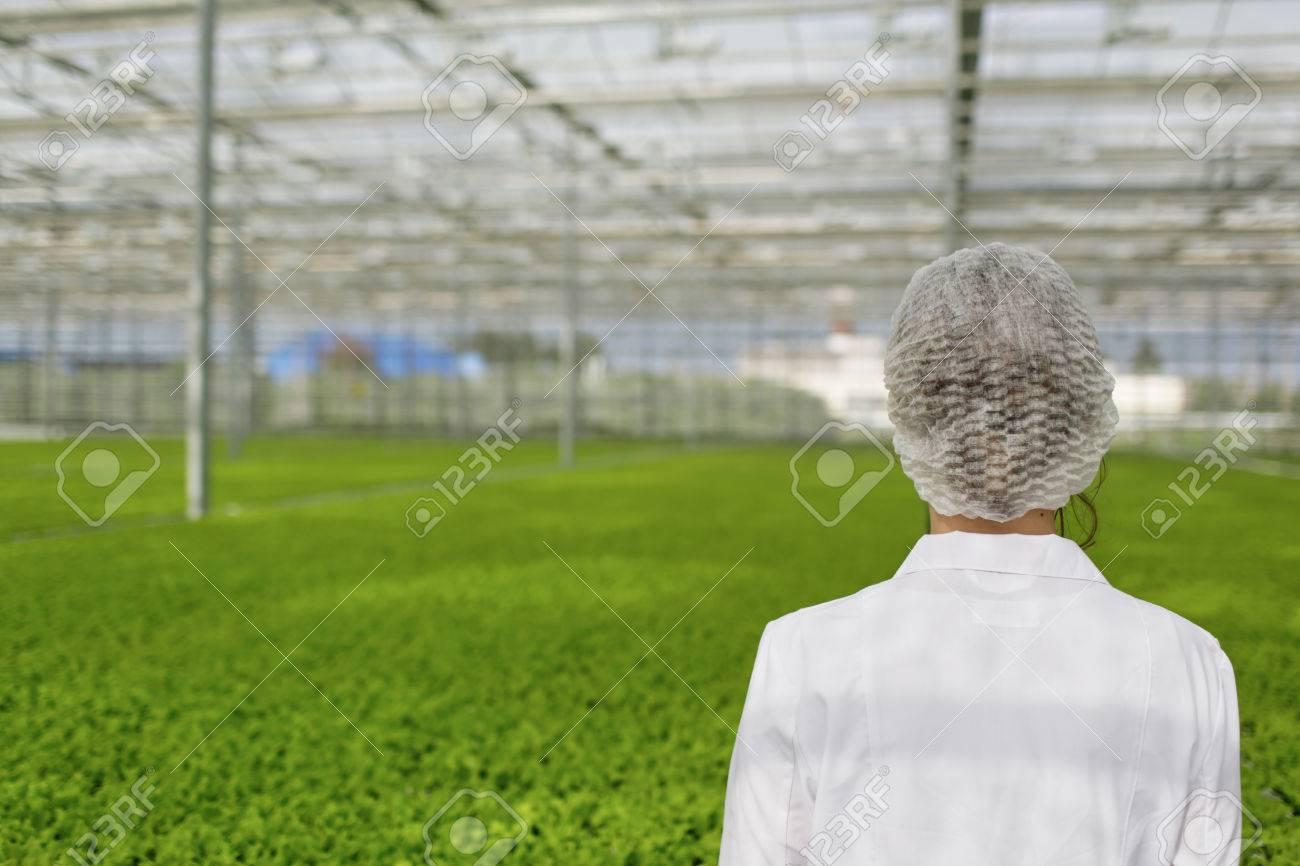Primer Plano De Regreso Biotecnología Mujer Ingeniero De Examinar ...