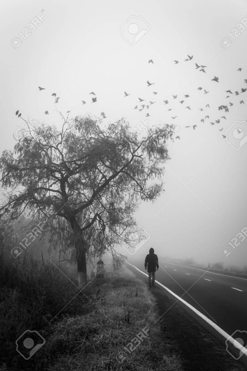 El Hombre Que Pasa Debajo De Un árbol En La Niebla, Pájaros Volando. El  Enfoque Suave Y El Movimiento Borroso Subrayan El Concepto De Fallecer.  Fotos, Retratos, Imágenes Y Fotografía De Archivo