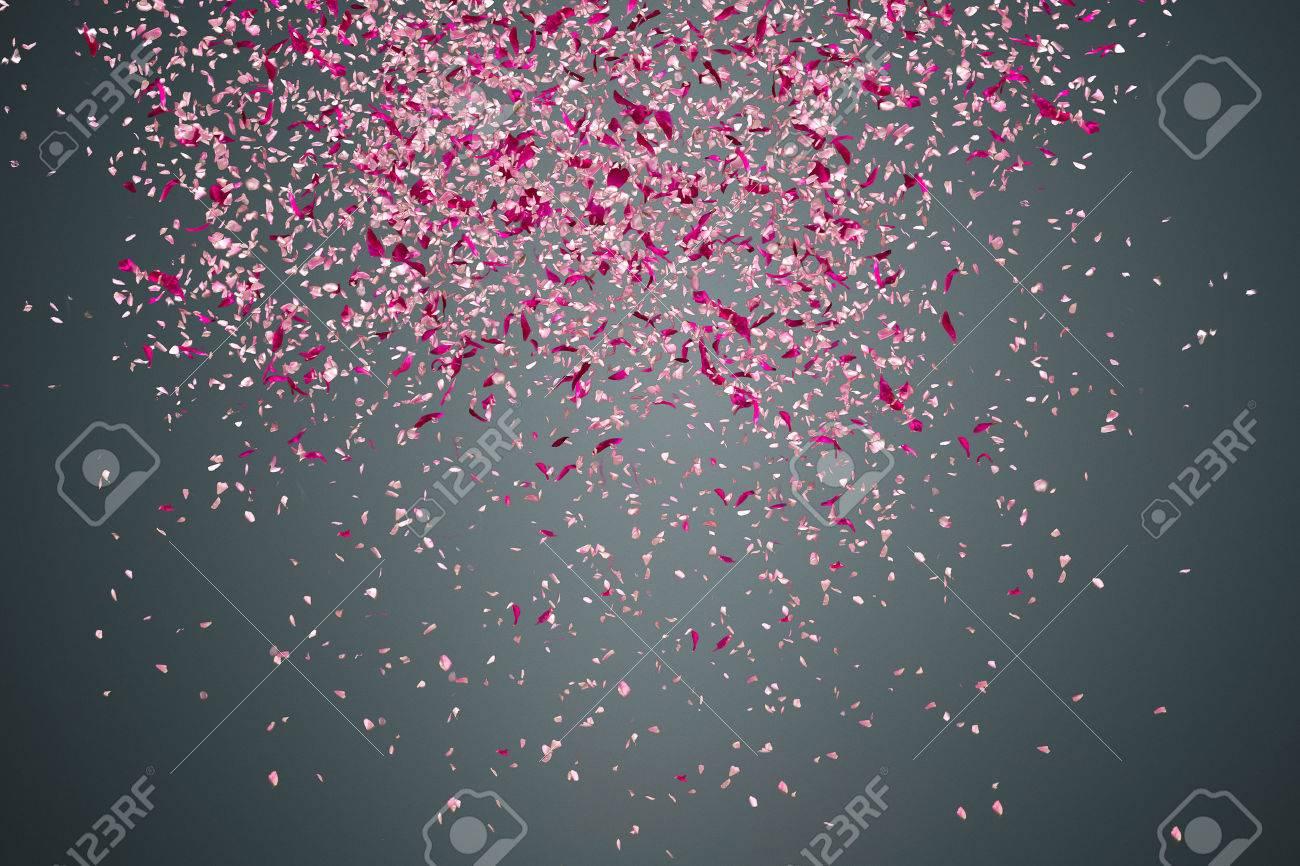 Pink Flower Petals Failing Down On Dark Background Stock Photo
