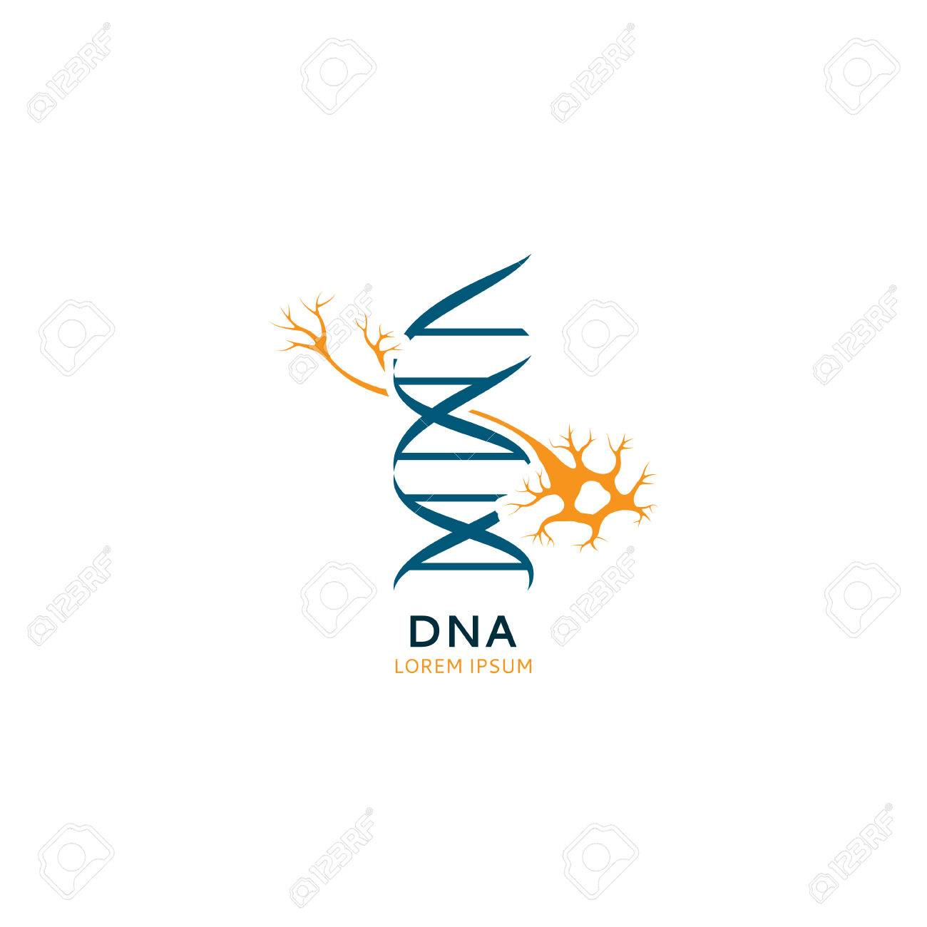 Dna Template | Dna Template With Sign Nerves Vector Dna Sketch For Your Design