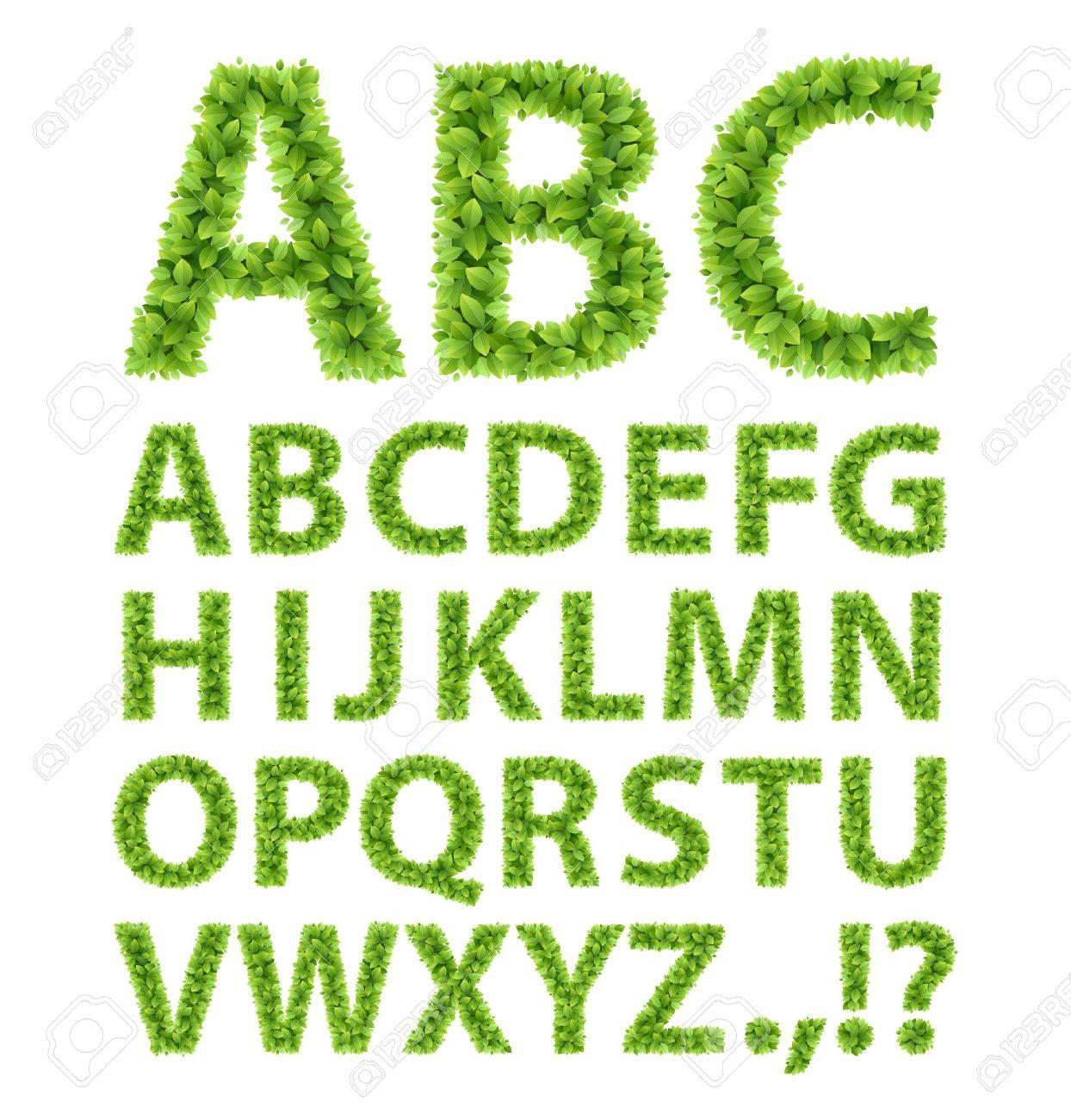 Green Leaves font  Vector illustration Stock Vector - 14749022