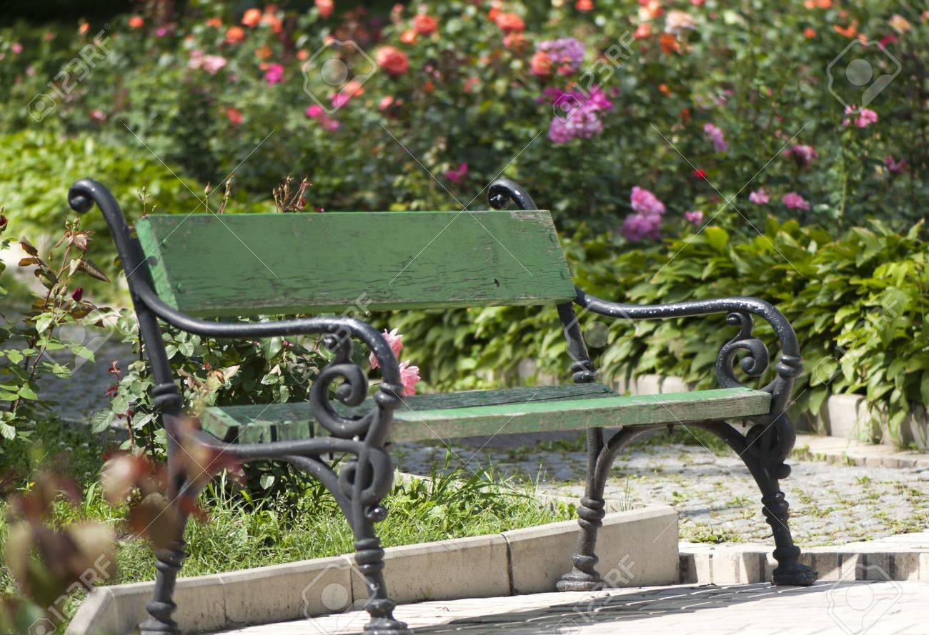 Wrought Iron Garden Bench Amid Blooming Roses Stock Photo   20309460