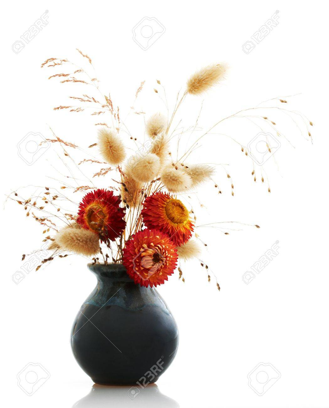 ikebana on white background Stock Photo - 10813178