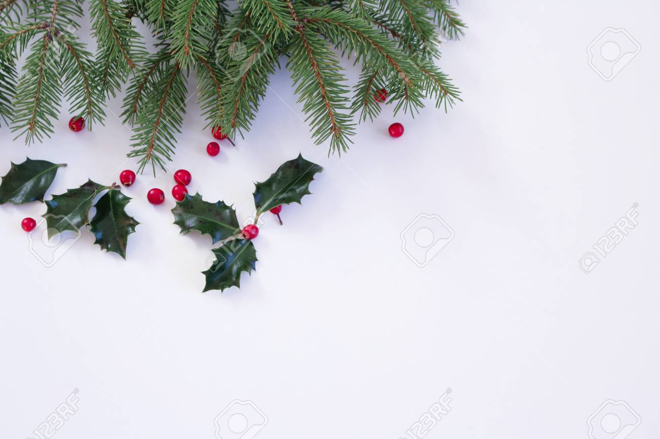 Closeup Branch Of Christmas Tree And Holly Leaves And Berries