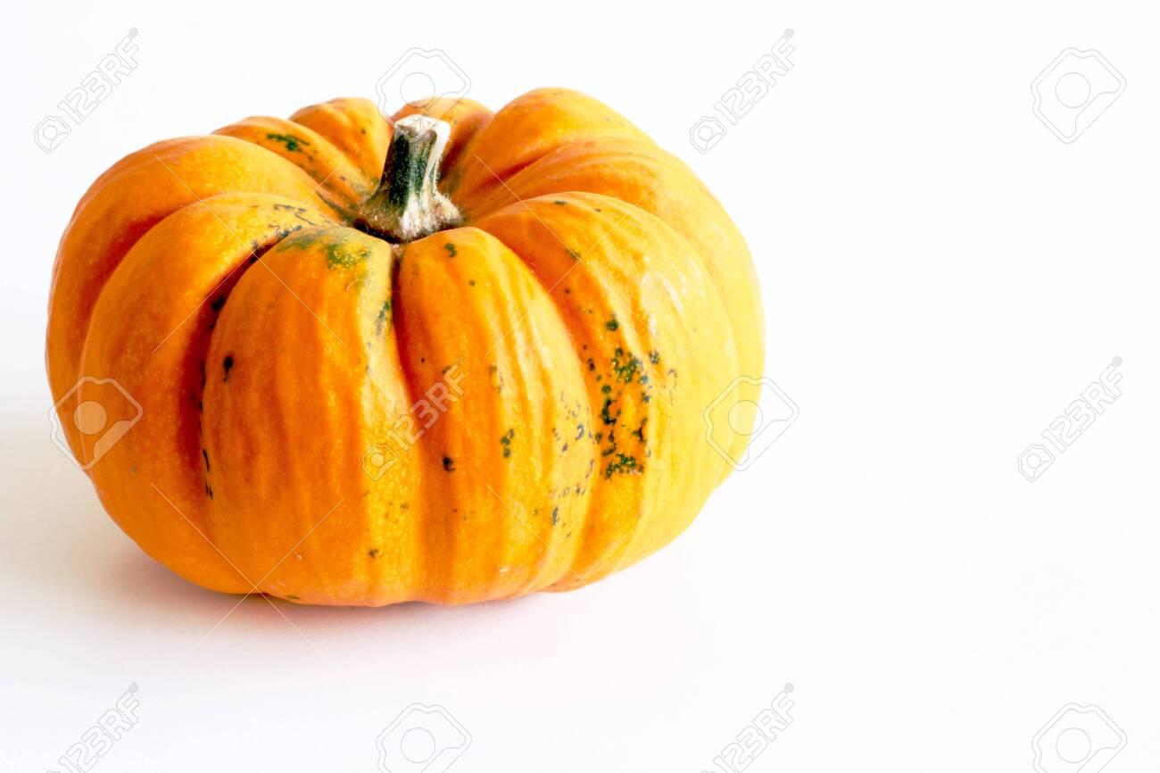 Cute Pumpkins On White Background Seasonal Pumpkins Background