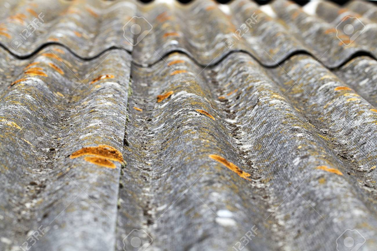 slate covering the roof of the building. On the slate visible light green moss and mold. Shallow depth of field, close-up photo - 66298151