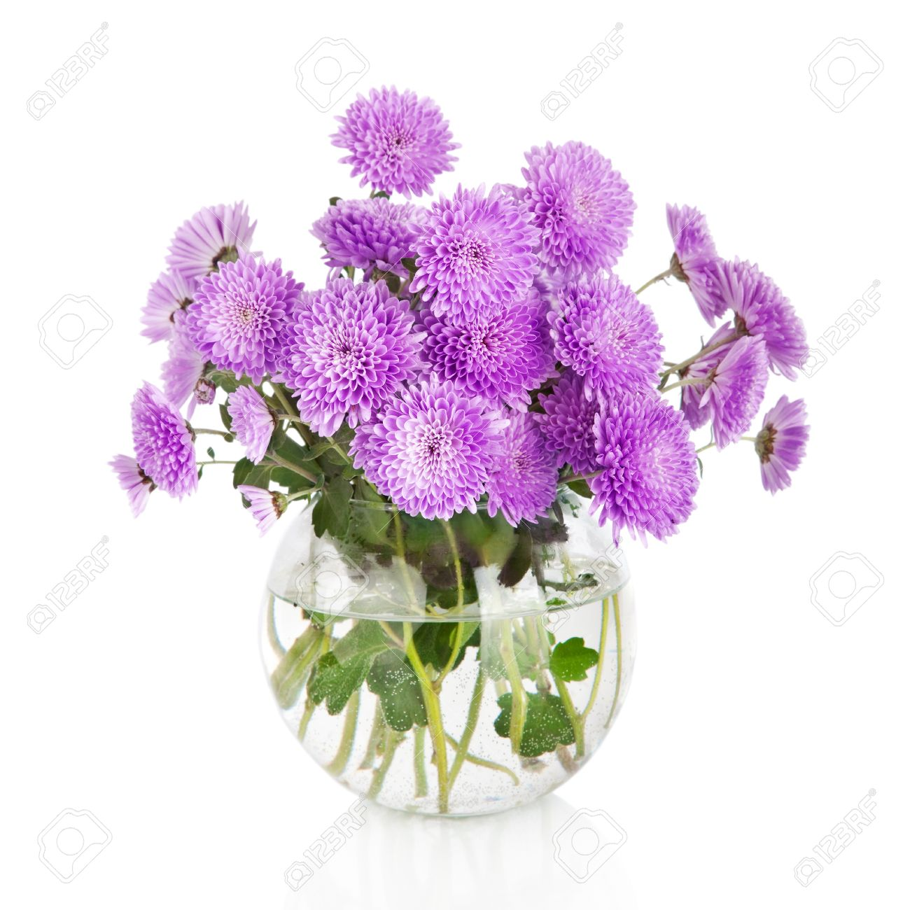 Bouquet Of Many Beautiful Chrysanthemum Flowers In Glass Vase ...