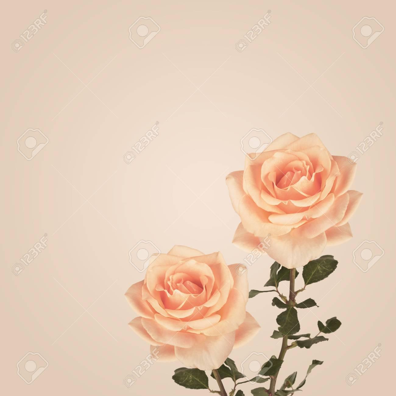 Immagini Stock Sfondo Vintage Con Fiori Di Rose Sfondo Retrò