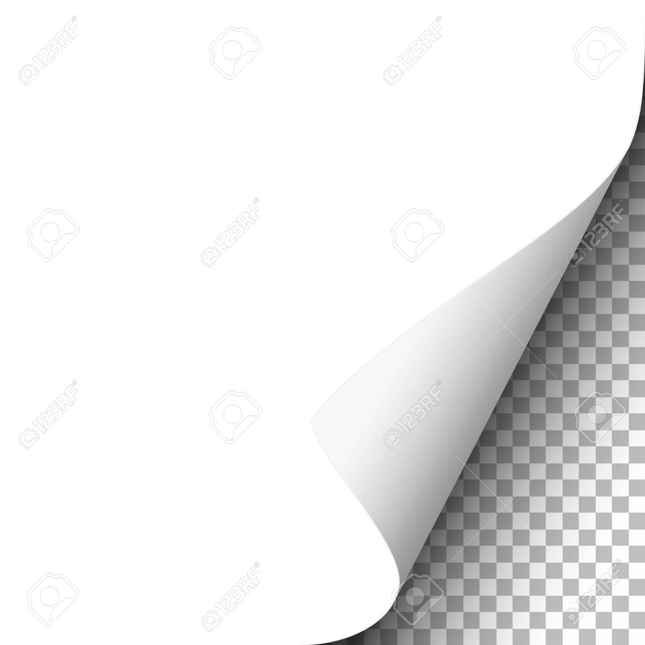 White paper sheet with lower right curl. Vector template paper design. - 143016754