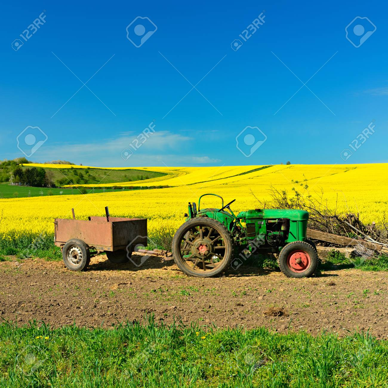 spring landscape old vintage tractors and fields of rapeseed