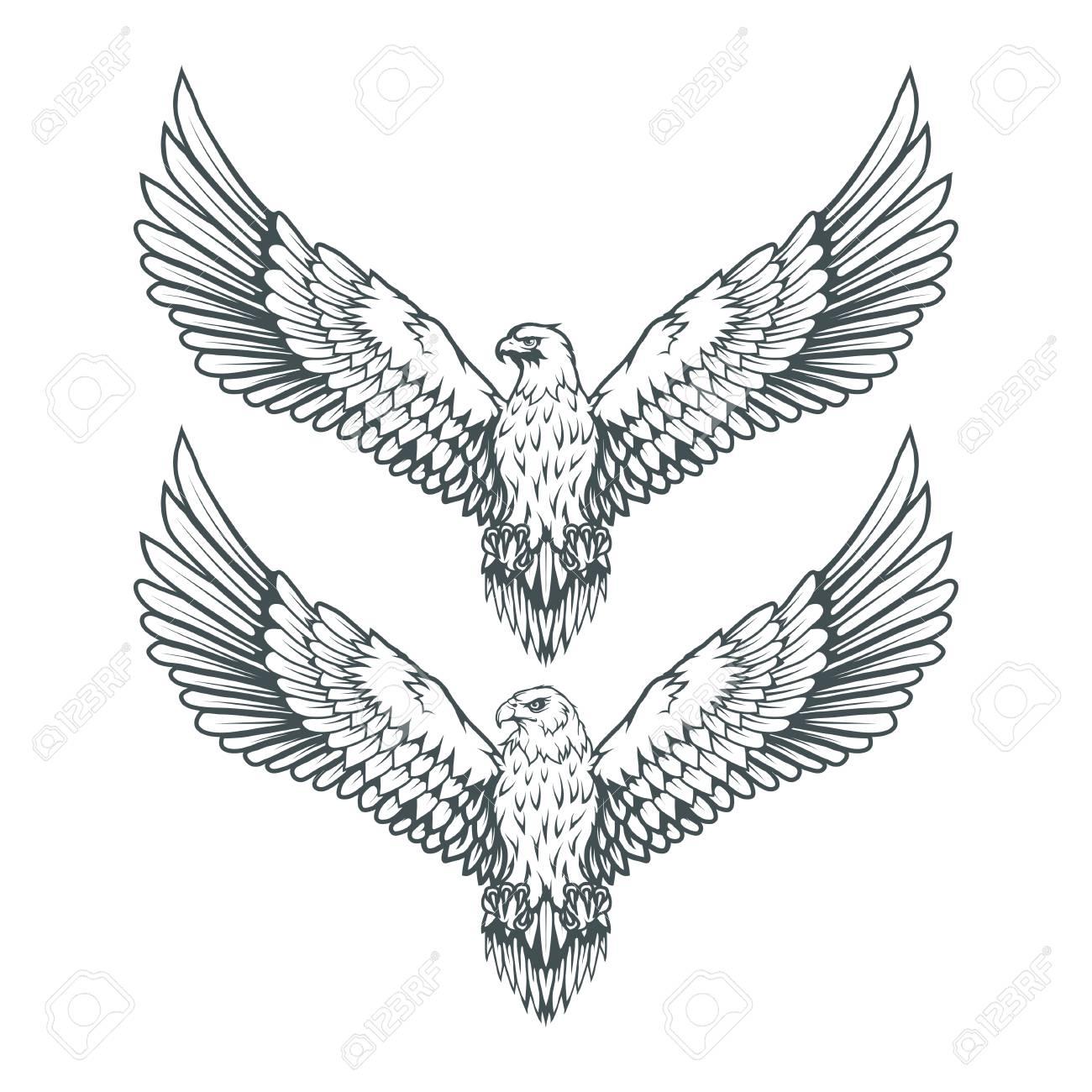 Set of eagles bald eagle logo wild birds drawing head of an eagle