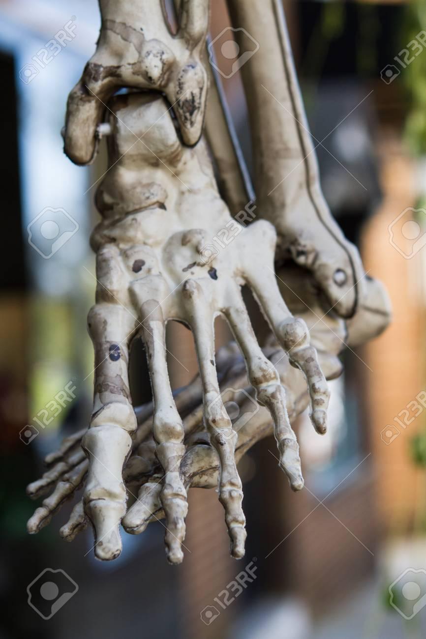 Decoración De Halloween Usando Los Pies Del Esqueleto Fotos ...
