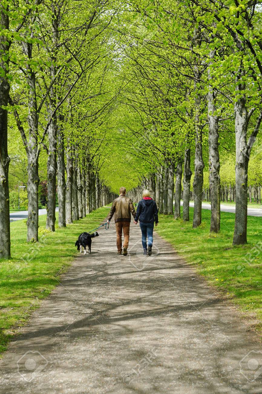 rear view of a young couple taking the dog for a walk - 40231223