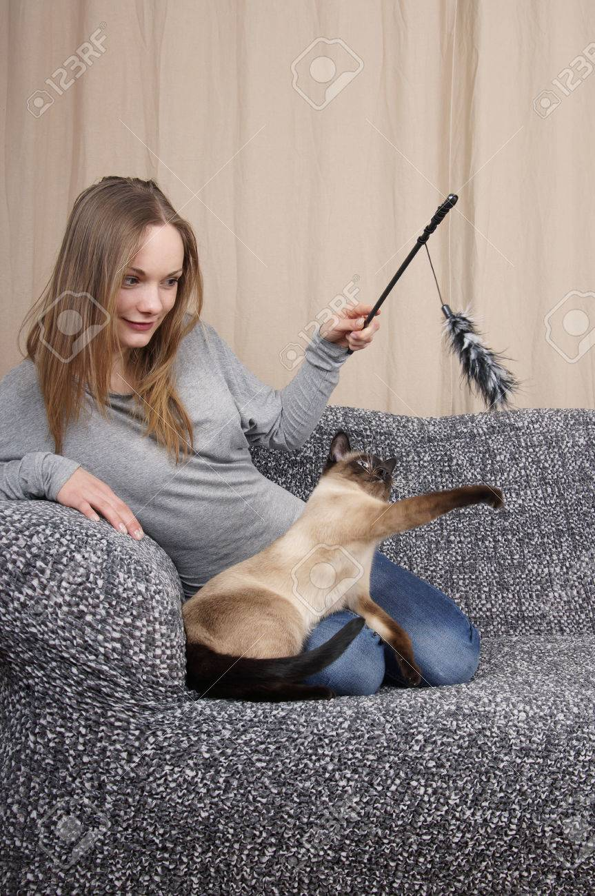 young woman playing with air prey teaser cat toy - 56601742