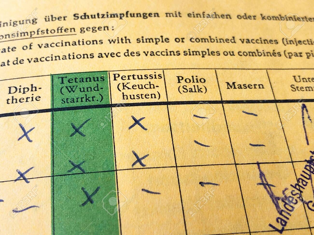 German international certificate of vaccination with missing records for measles and polio - 122167754