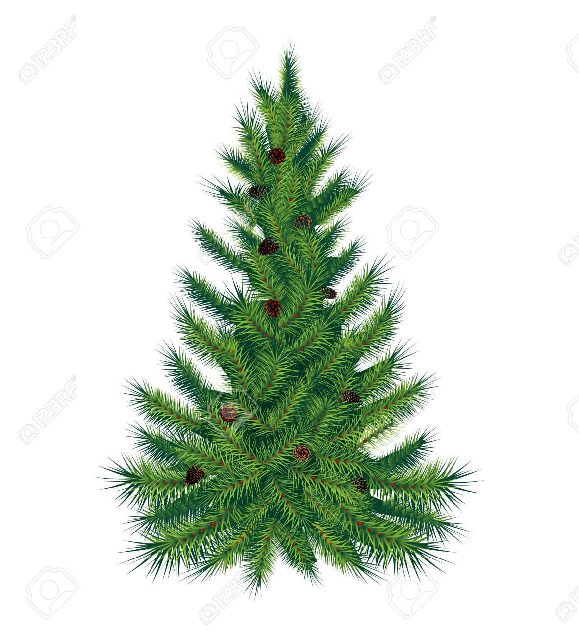 Single pine tree, isolated on white background. Vector illustration. High quality - 71759552