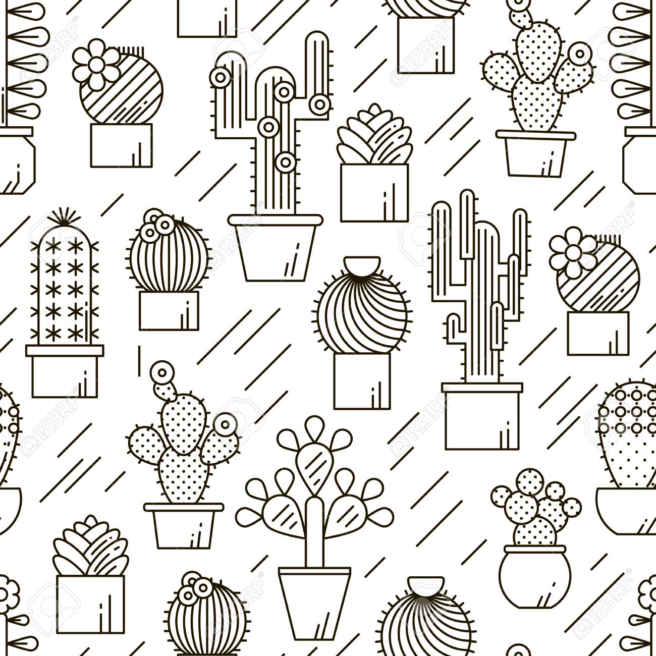 Cactus And Succulents Vector Line Seamless Pattern. Exotic Floral ...