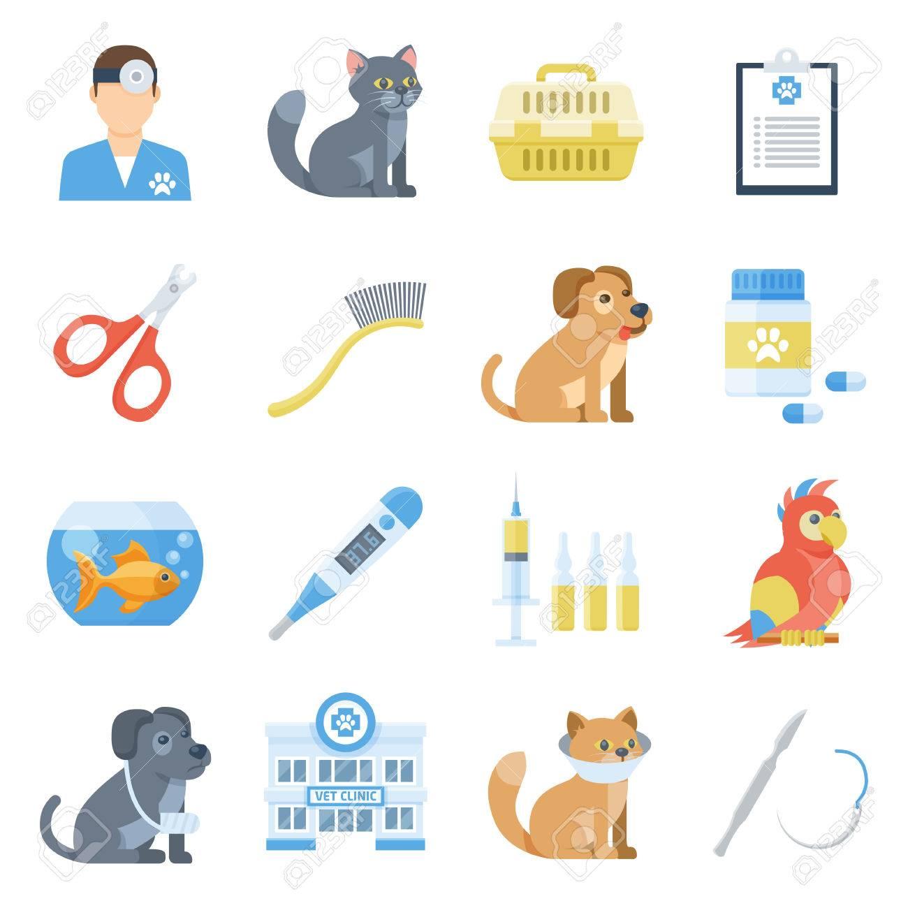 Veterinary medicine cartoon set  Diagnosis and treatment of disease