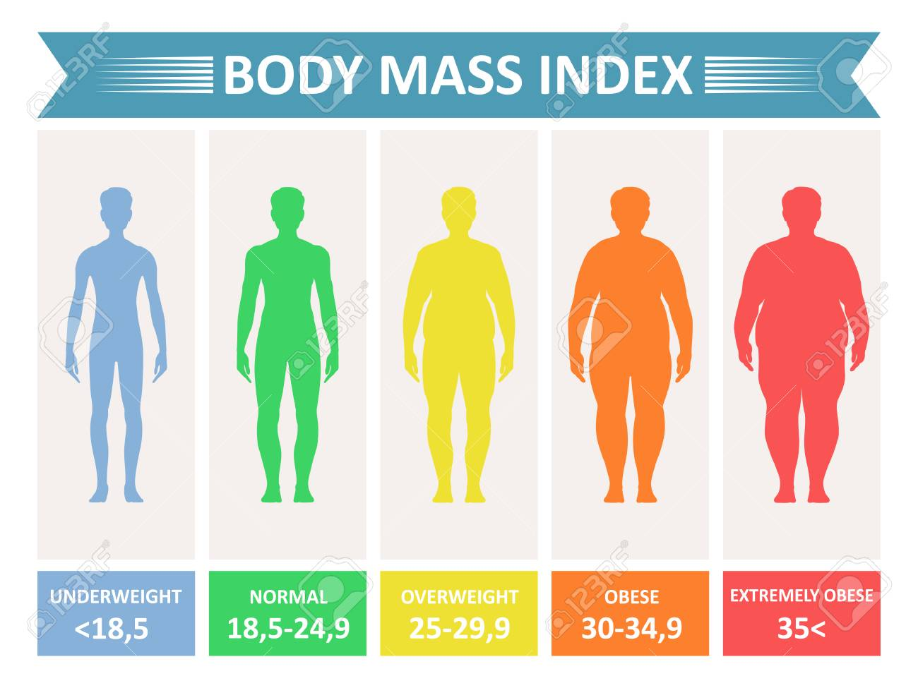Index mass body. Rating chart of body fat based on height and weight in kilograms. Vector flat style cartoon illustration isolated on white background - 91097059