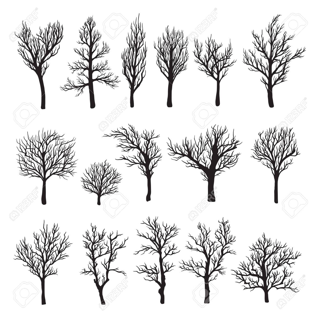 Trees without leaves black graphic silhouette icon - 123647407