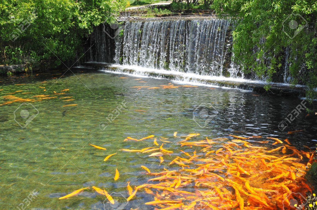 landscape garten mit fischteich und mini-wasserfall lizenzfreie ... - Mini Wasserfall Garten