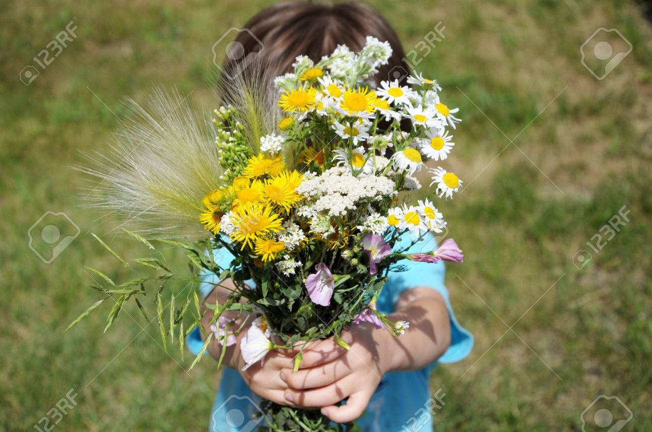 Boy Giving Summer Bouquet Of Flowers Stock Photo, Picture And ...