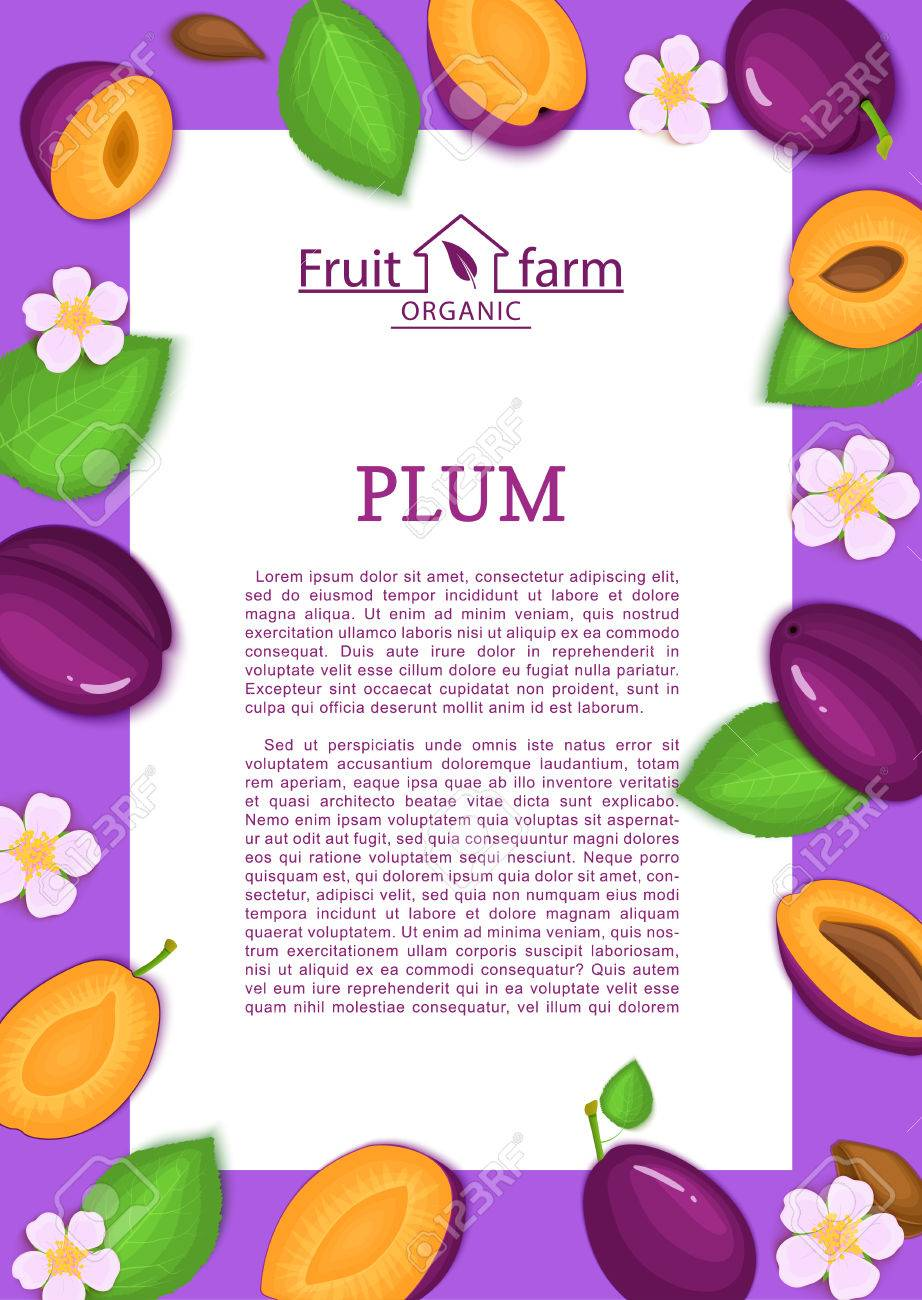 Rectángulo De Color Púrpura Marco Y Dibujos Animados Fruta De ...