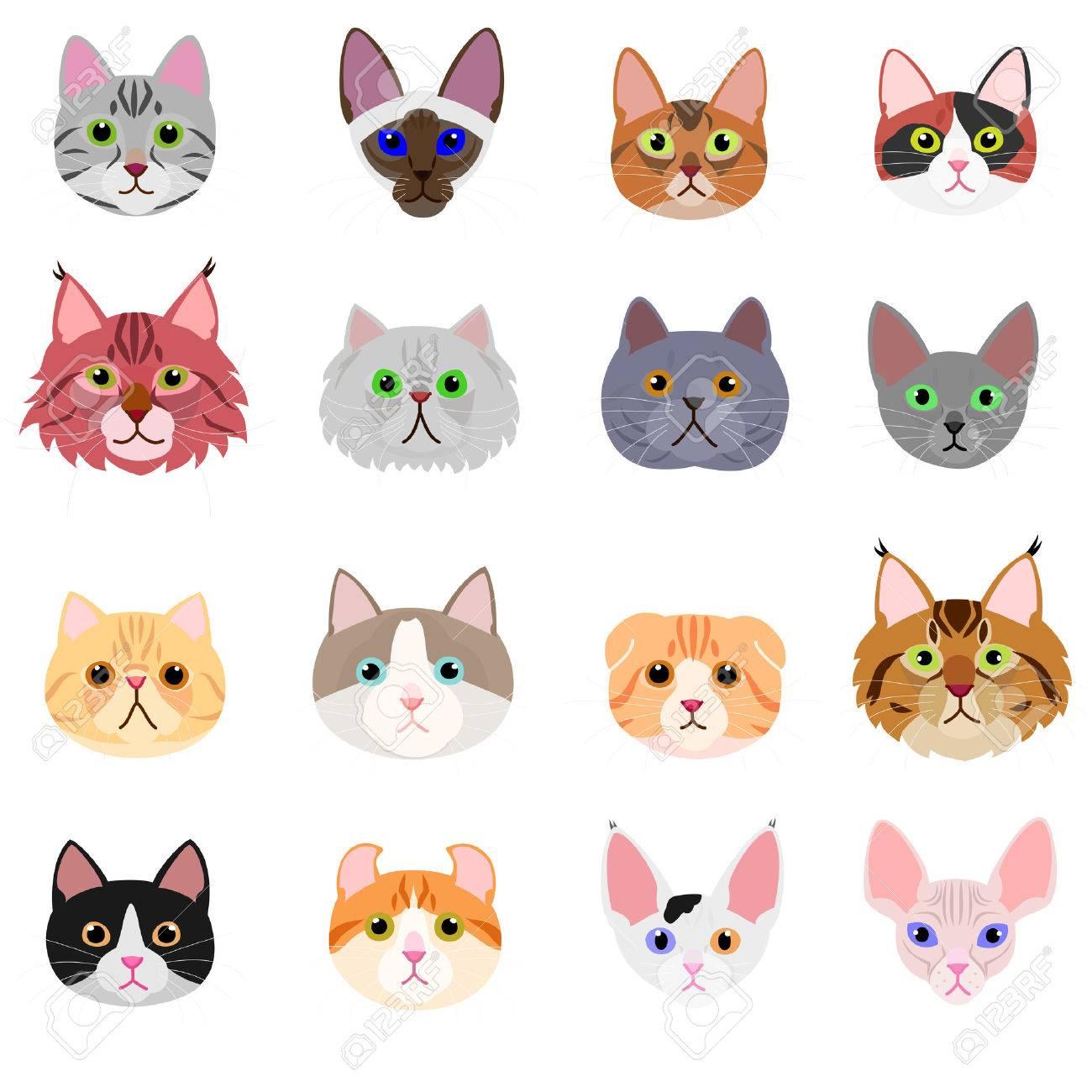 猫顔の白い背景の設定のイラスト素材 ベクタ Image 65002741