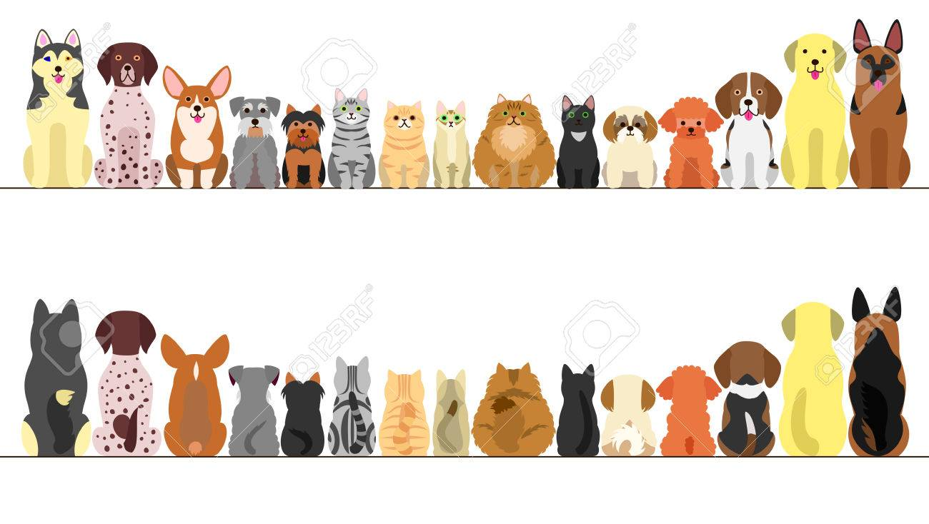 Large And Small Dogs And Cats Banner Set Front View And Rear Royalty Free Cliparts Vectors And Stock Illustration Image 69246868