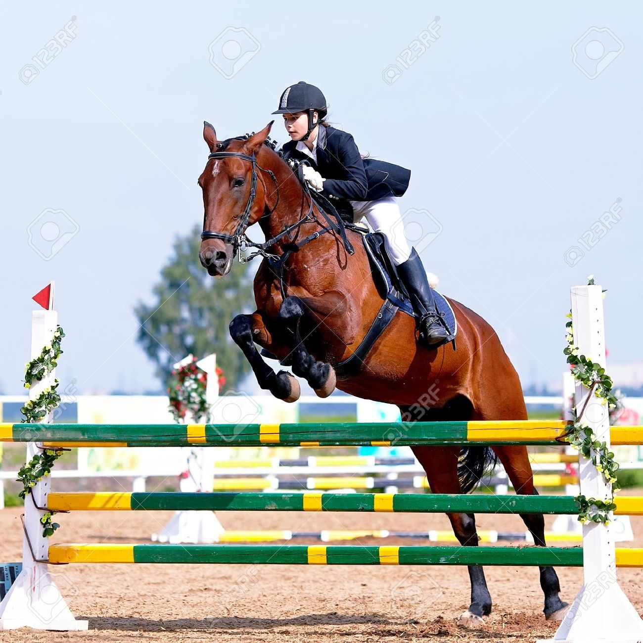 Equestrian sport. Show jumping. Overcoming of an obstacle. The sportswoman on a horse. The horsewoman on a red horse. Equestrianism. Horse riding. Horse racing. Rider on a horse. Standard-Bild - 21512323
