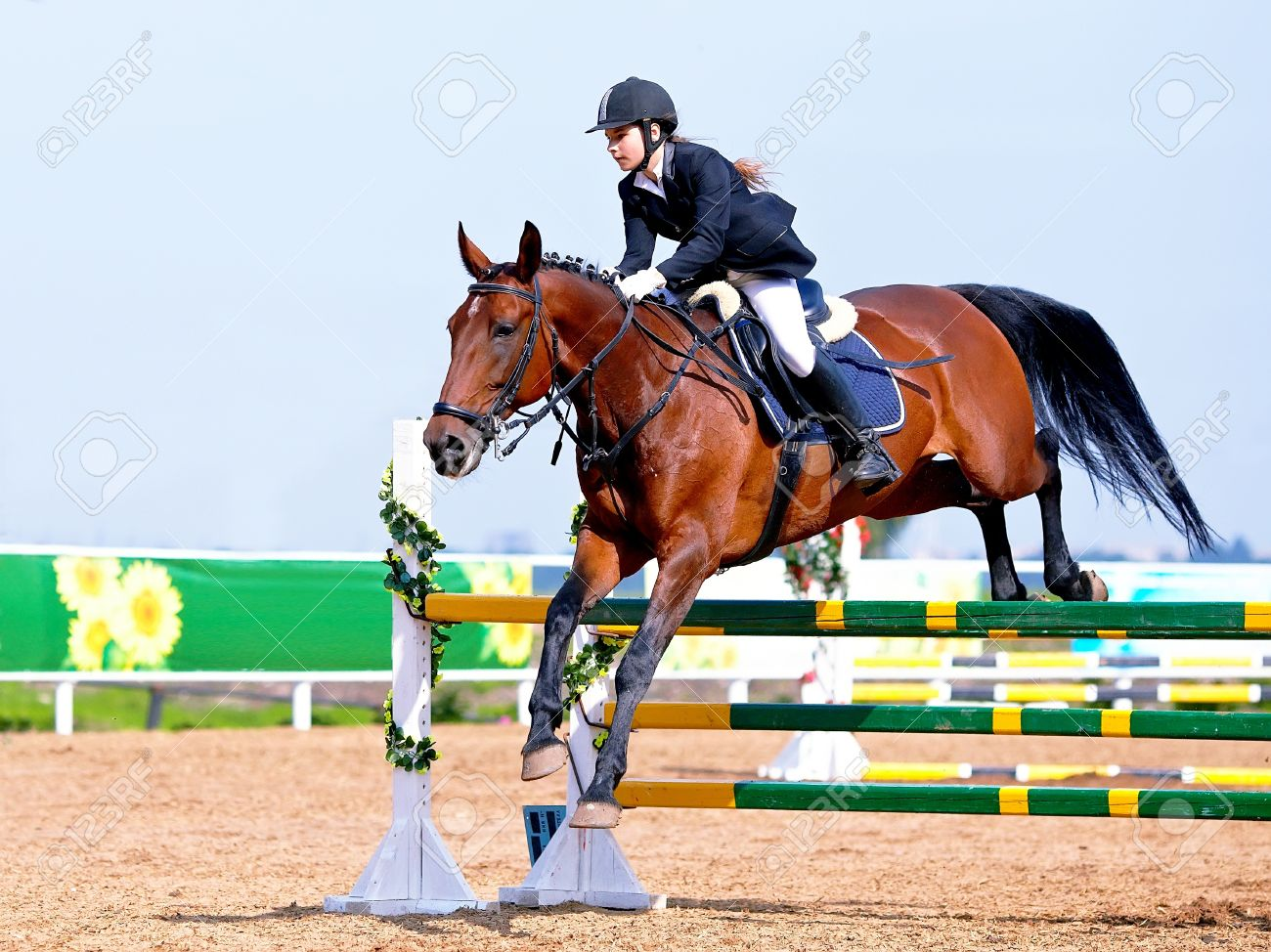 Equestrian sport. Show jumping. Overcoming of an obstacle. The sportswoman on a horse. The horsewoman on a red horse. Equestrianism. Horse riding. Horse racing. Rider on a horse. Standard-Bild - 21512324