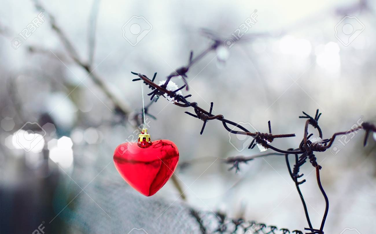 Heart And Barbed Wire. Love Symbol. Symbol Of Love And Metal Stock ...